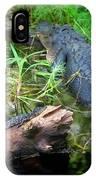 American Alligators IPhone Case