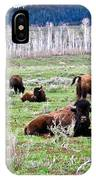 American Buffalo 16 IPhone Case