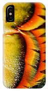 American Lobster Closeup In Chatham On Cape Cod IPhone Case