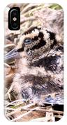 American Woodcock Chick IPhone Case