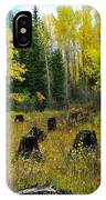 An Old Clear Cut In Autumn  IPhone Case