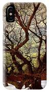 Ancient Winter Tree IPhone Case