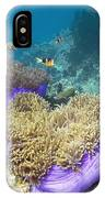 Anemones With Anemonefish IPhone Case