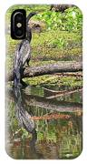 Anhinga And Reflection IPhone Case