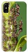 Ant Formicidae Pair Protecting Aphids IPhone Case