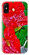 Anthurium IPhone Case