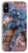 Antilles Pinktoe Tarantula IPhone Case