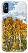 Apen Trees In Fall IPhone Case