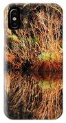April's Pond IPhone Case