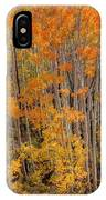Aspen Forest In Fall - Wasatch Mountains - Utah IPhone Case