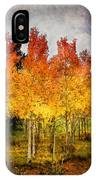 Aspen Grove In Autumn IPhone Case