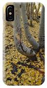 Aspen Trees Stand Above A Carpet IPhone Case
