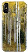 Aspen Trunks IPhone Case