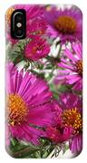 Aster Named September Ruby IPhone Case