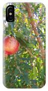 Aunt Tissy's Pomegranate Tree  IPhone Case