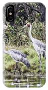 Australian Cranes At The Billabong IPhone Case