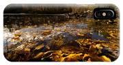 Autumn At Ragged Falls IPhone X Case