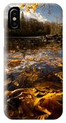 Autumn At Ragged Falls IPhone Case