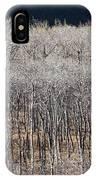 Autumn Birches IPhone Case