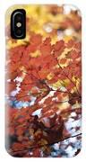 Autumn Brilliance IPhone Case