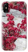 Autumn Color Is Red IPhone Case