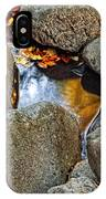 Autumn Colors Reflected In Pool Of Water IPhone Case
