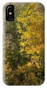 Autumn Colours IPhone Case