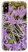 Autumn Crocus (colchicum Sp.) IPhone Case