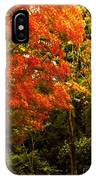 Autumn Fall Tree In Purchase New York IPhone Case