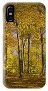 Autumn Forest Scene In West Michigan No.1140 IPhone Case