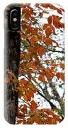 Autumn Glory At Tannehill IPhone Case