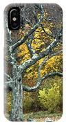 Autumn Grandfather Tree 2 IPhone Case