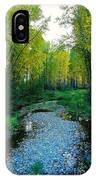 Autumn Hue  IPhone Case