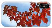 Autumn Leaves Tree Red Orange Art Prints Blue Sky White Clouds IPhone Case