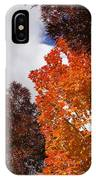 Autumn Looking Up IPhone Case