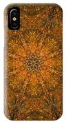 Autumn Mandala 2 IPhone Case