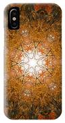 Autumn Mandala 8 IPhone Case