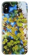 Autumn Maple IPhone Case