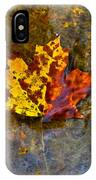 Autumn Maple Leaf In Water IPhone Case