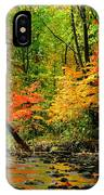 Autumn Reflects IPhone Case