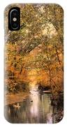 Autumn Riches 2 IPhone Case