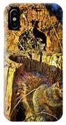 Autumn Rusticana IPhone Case
