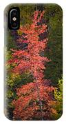 Autumn Scene Of Colorful Red Tree Along The Little Manistee River In Michigan No. 0902 IPhone Case