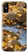 Autumn Slipping Away 0437 IPhone Case