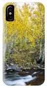 Autumn Stream II IPhone Case