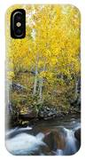 Autumn Stream Iv IPhone Case