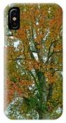 Autumn Sweetgum Tree IPhone Case