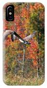 Autumn Vermont Geese And Color IPhone Case