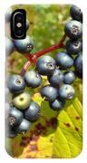 Autumn Viburnum Berries Series #3 IPhone Case