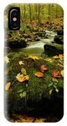 Autumn View Shows Fallen Leaves IPhone Case